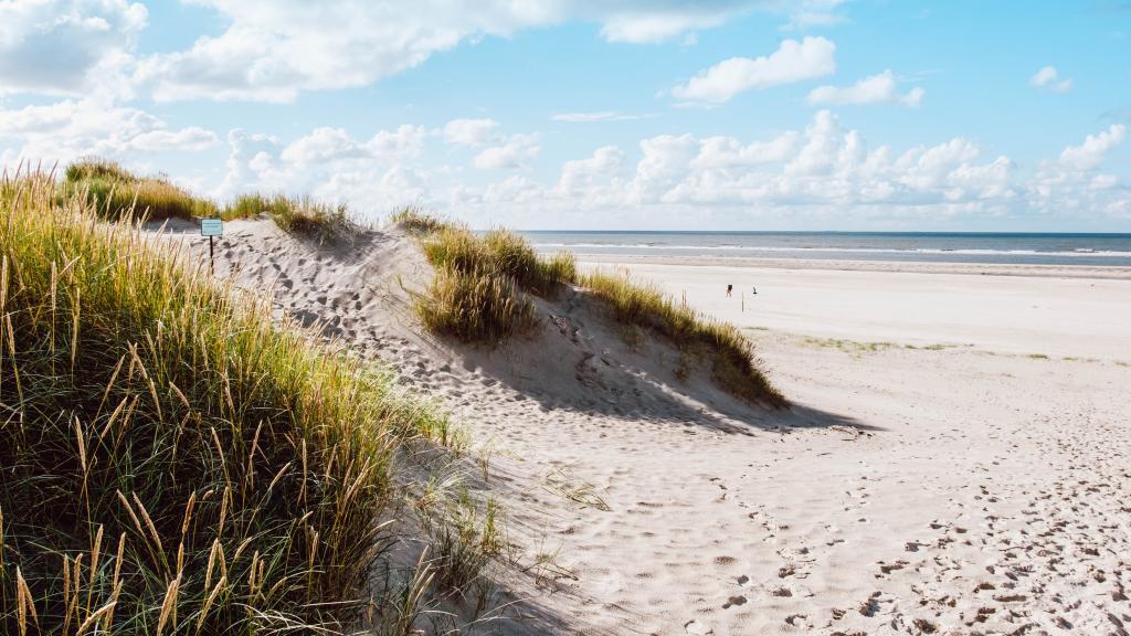 b1225eebc1c457 Sommer | Nordseeinsel Langeoog